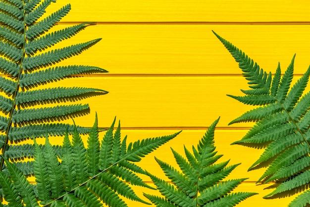 De thaise groene kleur van de varen tropische installatie op gele houten textuur Premium Foto