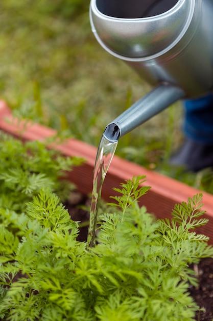 De tuinman die van de close-up met sproeier water geeft Gratis Foto