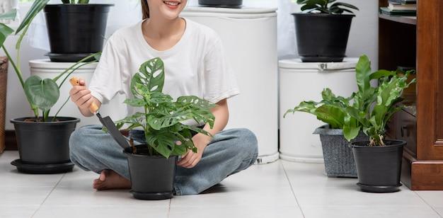 De vrouw zit en plant bomen in huis. Gratis Foto