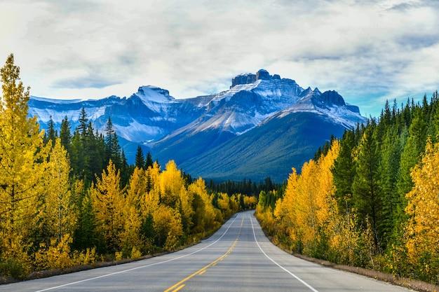 De weg 93 mooi Premium Foto
