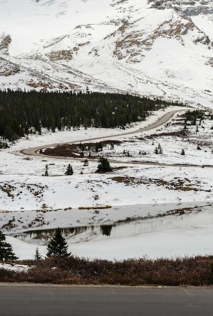 De wintermening van colombia icefield in jasper national park, alberta, canada Premium Foto
