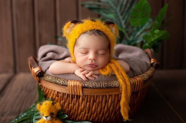 De zuigeling die mooie babyjongen in gele dierlijke gevormde hoed en binnen bruine mand samen met groen slapen doorbladert in houten ruimte Gratis Foto