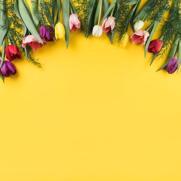 Decoratie van kleurrijke tulpen op gele achtergrond met ruimte voor het schrijven van de tekst Gratis Foto
