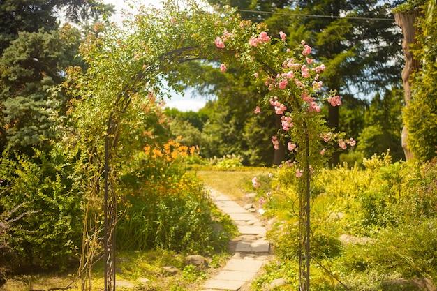 Decoratieve boog met rozen in de zomertuin Premium Foto