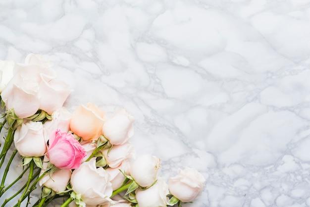 Decoratieve kleurrijke rozen op een achtergrond Gratis Foto