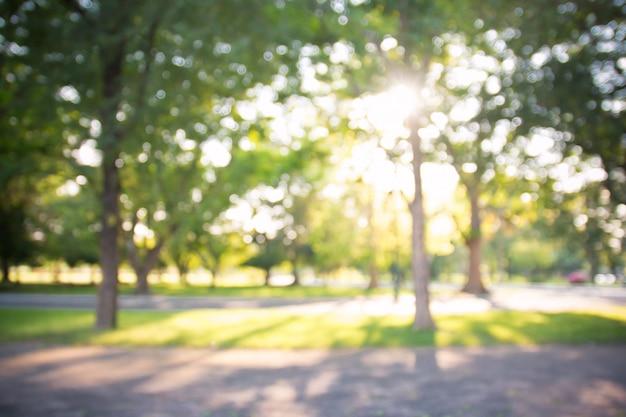 Defocused bokeh achtergrond van tuin met tot bloei komende bomen in zonnige dag, achtergrond Premium Foto