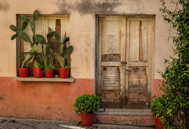 Deur van oud huis en cactussen op vensterbank Premium Foto