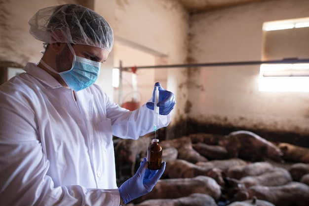 Dierenarts in beschermende kleding met spuit met medicijnen op varkensbedrijf Gratis Foto