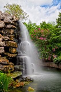 Dierentuin waterval hdr Gratis Foto