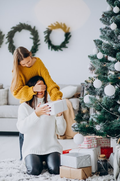 Dochter die huidige verrassing voor moeder op kerstmis maakt Gratis Foto