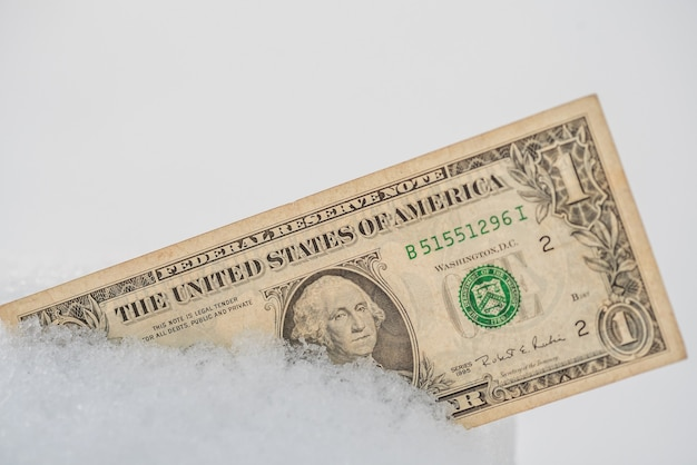 Dollar in de sneeuw. bevroren geldconcept. bankcrisis. de economie is bevroren. detailopname. amerikaans geld. Premium Foto