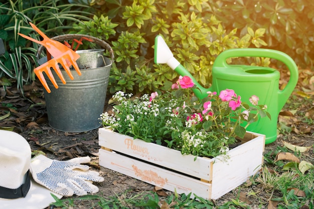 Doos met bloemen in de groene tuin Gratis Foto