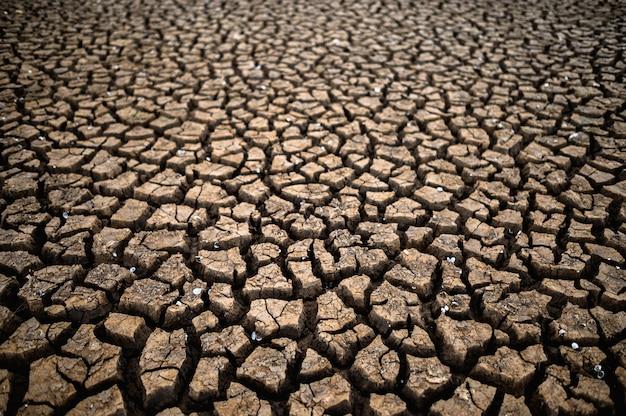Dor land met droge en gebarsten grond, opwarming van de aarde Gratis Foto