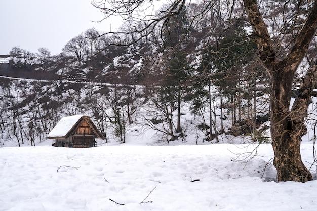 Dorpen van shirakawago en gokayama Premium Foto