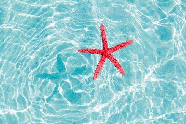 Drijvende rode zeester in turquoise zandstrand Premium Foto