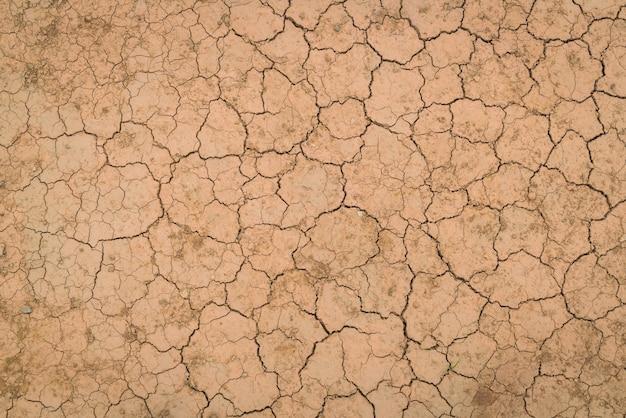 Droge en gebarsten grond textuur. Gratis Foto