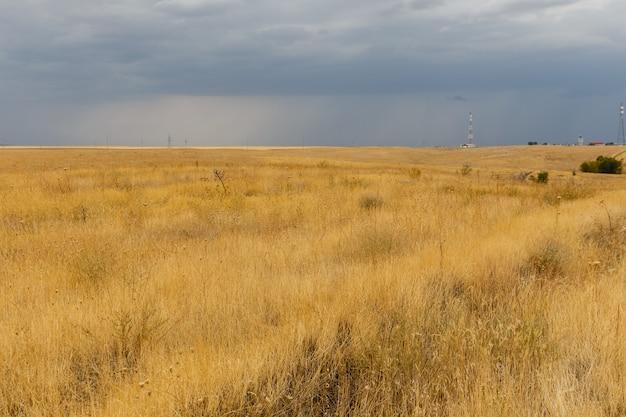 Droog gras in de steppe, woestijnlandschap, kazachstan, Premium Foto