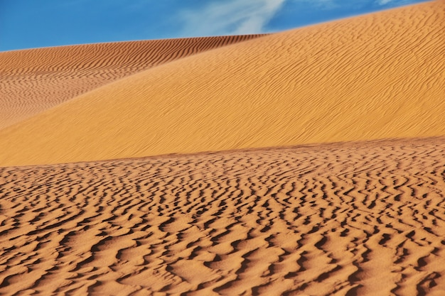 Duinen in de woestijn van de sahara in het hart van afrika Premium Foto