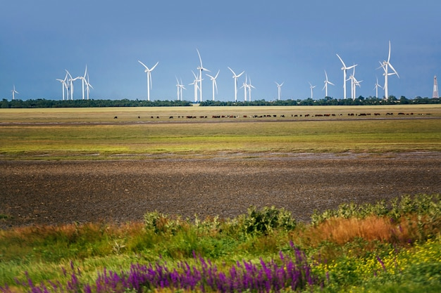 Eco power, windturbines Premium Foto