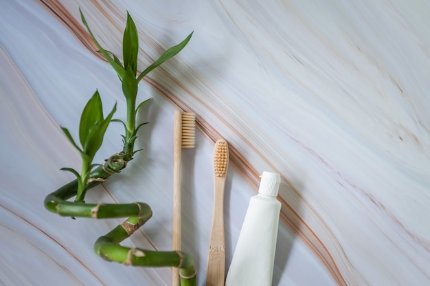 Ecotandenborstels met natuurlijke tandpasta en tak van bamboe. Premium Foto