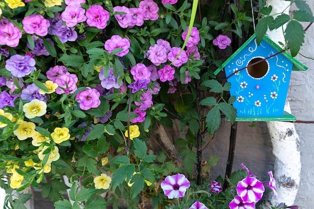 Een blauw vogelhuis hangt op een berk omringd door petuniabloemen. Premium Foto
