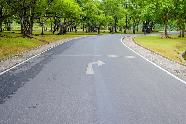 Een bochtige weg van fris groen Premium Foto