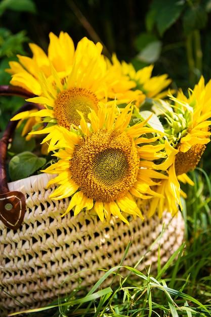 Een boeket zonnebloemen ligt in een strozak op het groene gras. Premium Foto