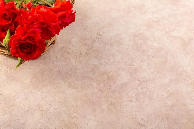 Een bovenaanzicht rode rozen mooie rode bloemen geïsoleerd op tafel en roze Gratis Foto