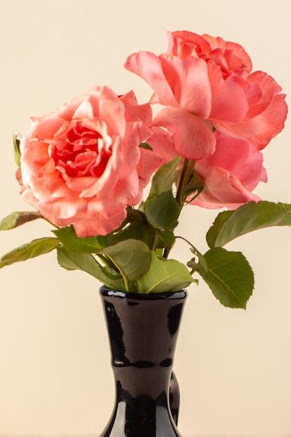 Een bovenaanzicht rode rozen mooie roze bloemen in zwarte kruik geïsoleerd op tafel en roze Gratis Foto