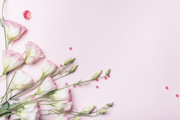 Een bovenaanzicht van verse bloemen met rode parels op roze achtergrond Gratis Foto