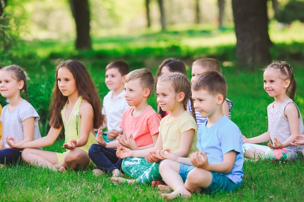 Een grote groep kinderen die zich bezighouden met yoga in het park zittend op het gras. Premium Foto