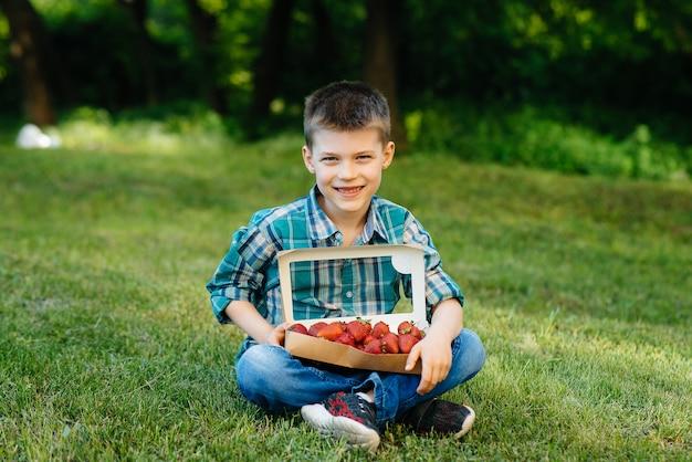 Een kleine schattige jongen zit met een grote doos rijpe en heerlijke aardbeien. Premium Foto