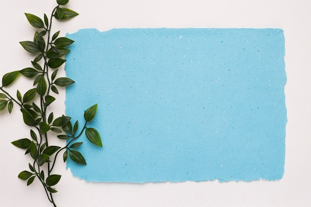 Een kunstmatig groen takje dichtbij het blauwe gescheurde document op witte achtergrond Gratis Foto
