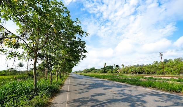 Een landelijke weg door de spoorweg Premium Foto