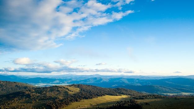 Een landschapsmening van mooi vers groen bos, weg chui-tract en altai-bergachtergrond. Premium Foto