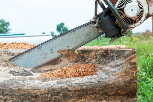 Een man die een boom met een kettingzaag snijdt Premium Foto