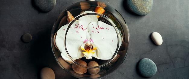 Een orchideebloem drijft in een rond aquarium Premium Foto