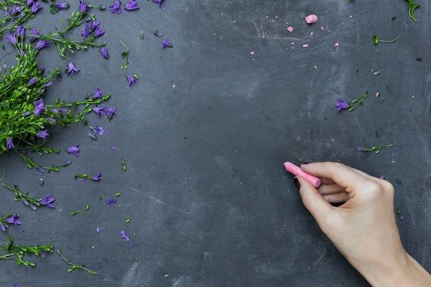 Een persoon die op een bord tekent met roze krijt omringd door paarse bloembladen Gratis Foto