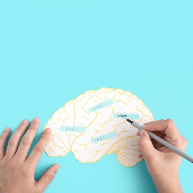 Een persoon schrobben de ideetekst op papier uitgesneden hersenen tegen de blauwe achtergrond Gratis Foto