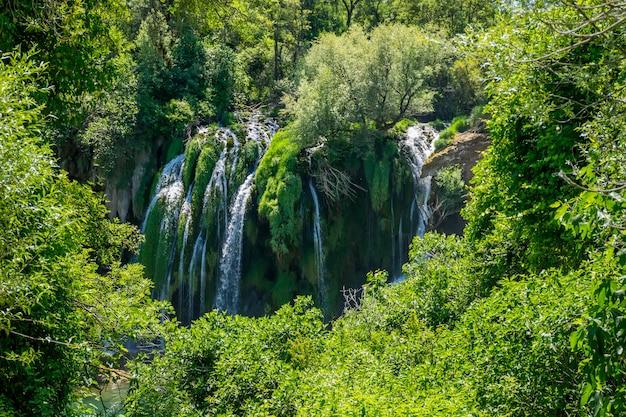 Een pittoreske waterval stroomt in een dicht groen bos. Premium Foto