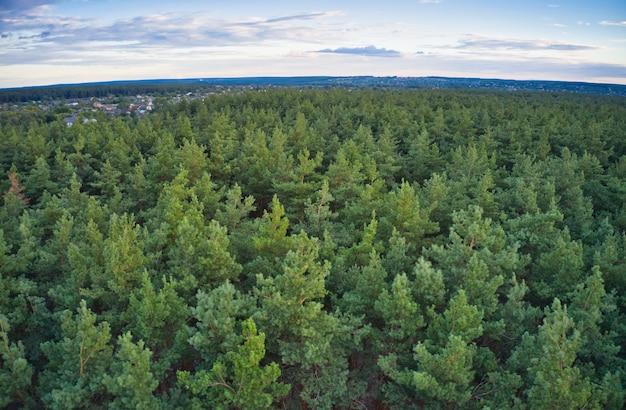 Een prachtig groot dorp waarrond een groot groen sparrenbos ligt Premium Foto