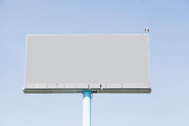 Een vogel die op leeg aanplakbord voor reclame tegen blauwe hemel neerstrijkt Gratis Foto