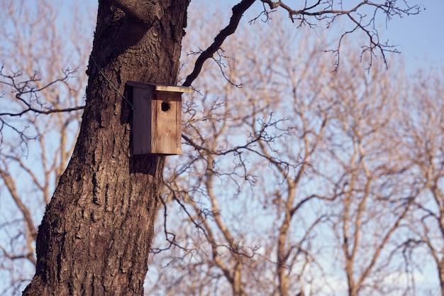 Een vogelhuisje aan een boom op een zonnige dag. Premium Foto