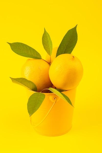 Een vooraanzichtmand met verse rijp citroenen met groene bladeren die op de gele achtergrondcitrusvruchtenkleur worden geïsoleerd Gratis Foto