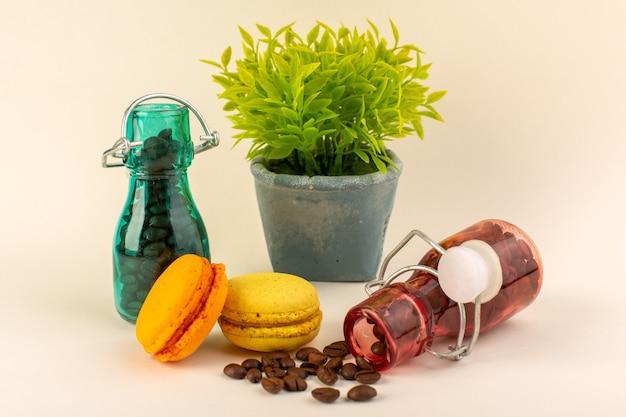 Een vooraanzichtpot met koffie franse macarons en groene plant op het roze oppervlak Gratis Foto