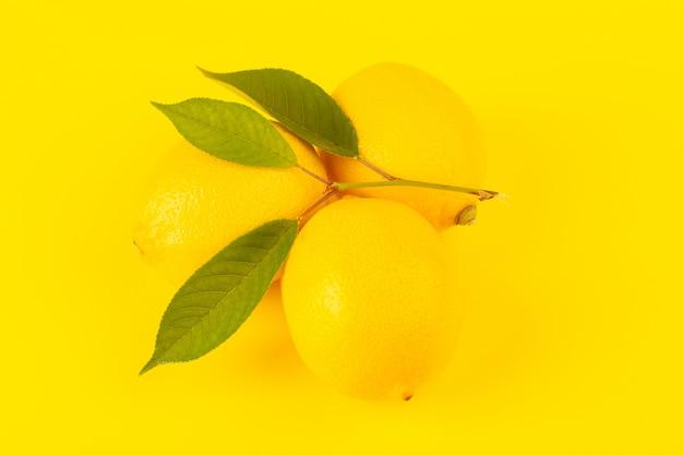 Een voorzijde sloot omhoog gele verse citroenen verse rijp met groene bladeren die op de gele achtergrond worden geïsoleerd Gratis Foto