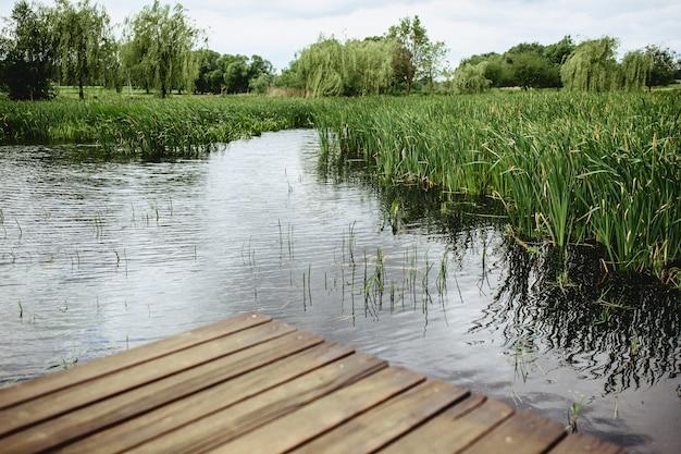 Een weergave van een riet en een blauw meer van een brug Premium Foto