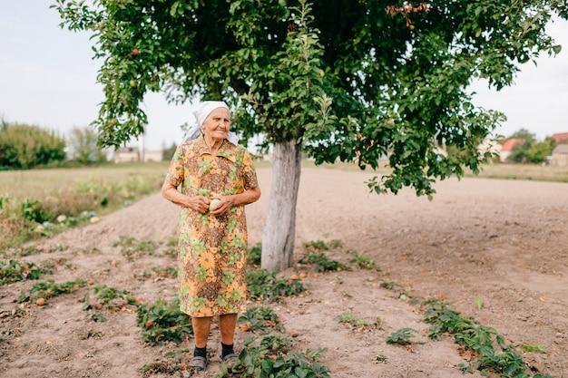 Eenzame oude vrouw met groene appel in handen die zich in tuin voor appelboom bevinden. Premium Foto