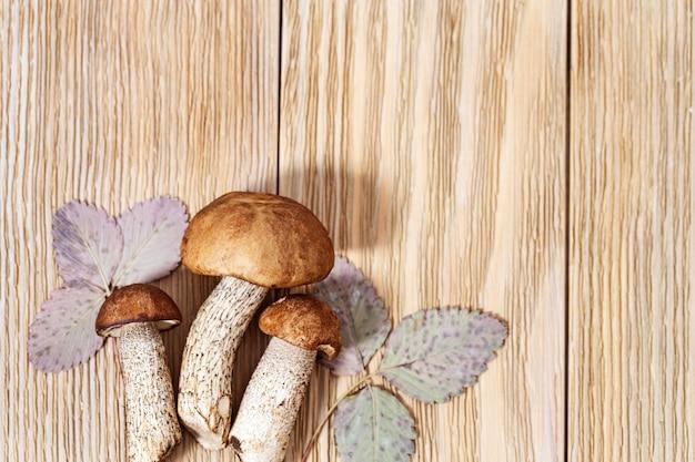 Eetbare eekhoorntjesbrood (leccinum) close-up op houten rustiek met kopie ruimte. Premium Foto