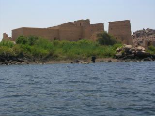 Egypte, planten Gratis Foto